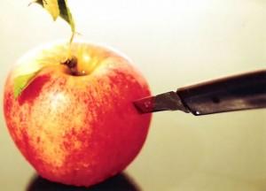 apple-300x216