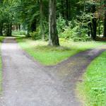 I Choose The Road Less Traveled
